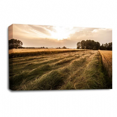 Landscape Canvas Art Countryside Farm Wall Picture Print